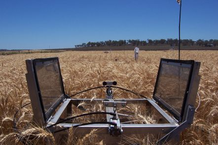 Measuring wheat field emissions