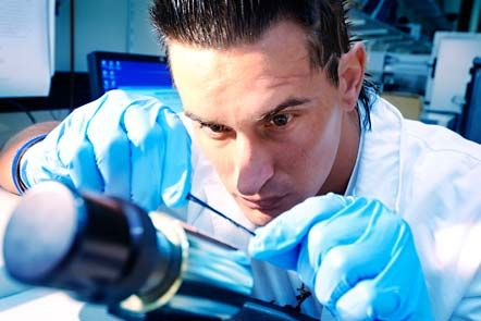 Top rankings for QUT research
