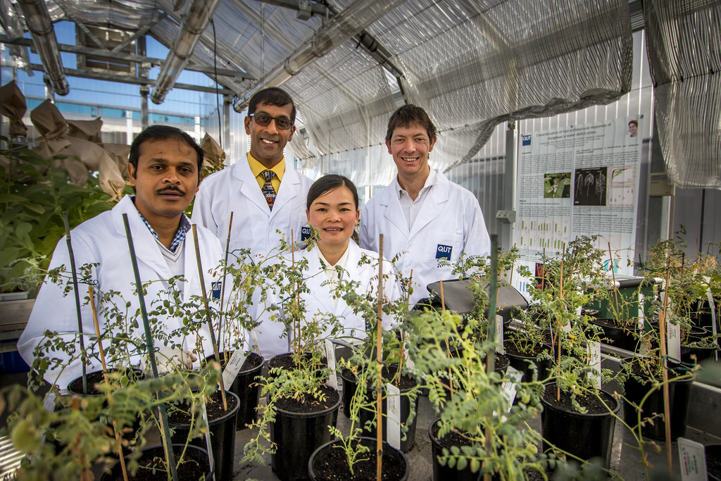 Centre for Tropical Crops and Biocommodities