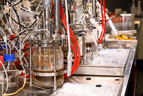 QUT fermentation and bioprocessing laboratory bioreactor
