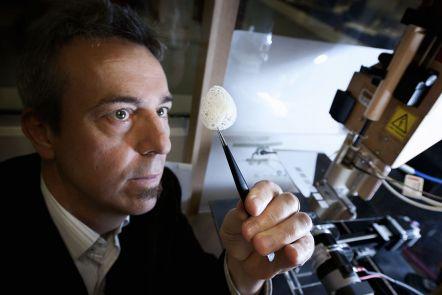 Professor Dietmar Hutmacher