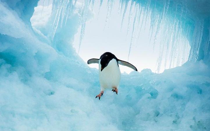 QUT researchers head to Antarctica